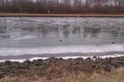 Wesel-Datteln-Kanal gefroren 1
