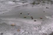 Wesel-Datteln-Kanal gefroren 3
